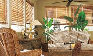 Hunter Douglas Wood Blinds with Decorative Tapes